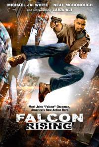 Falcon Rising / Възходът на Сокола (2014)