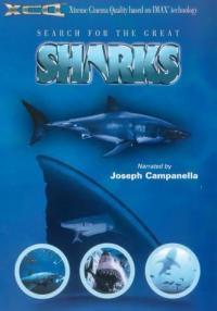 Search for the Great Sharks / В търсене на големите акули (1995)