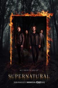 Supernatural s12e20 - Twigs & Twine & Tasha Banes