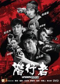 Undercover Punch and Gun / Под прикритие, удряй и стреляй (2019)